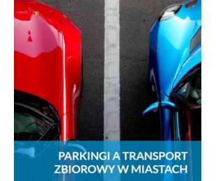 Raport Parkingowy